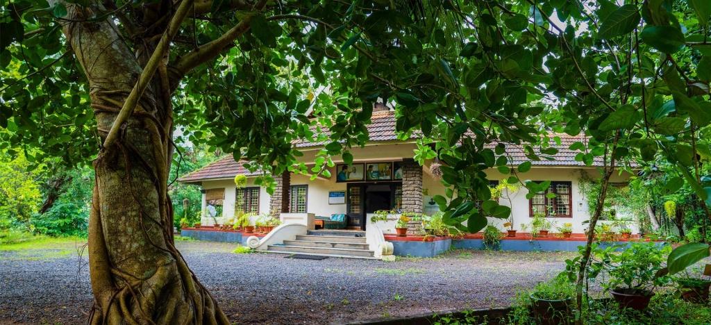 Sreekrishna Ayurveda